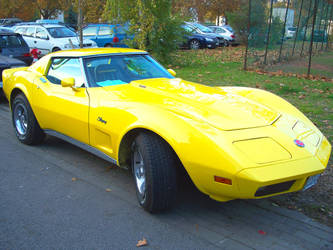 74 Corvette C3 Stingray by LlamaDalai