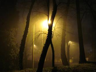 foggy night by lollotek