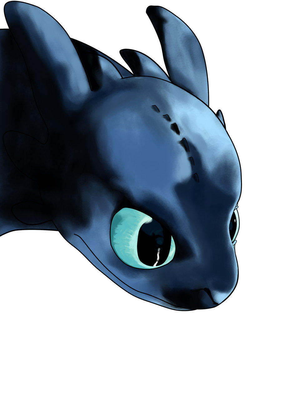 KallusTail's Profile Picture