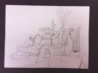 Contour Still Life by CARPEBRI