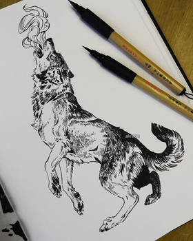 brush pen wolf by akreon