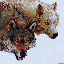 wolves by akreon
