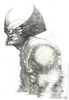 Wolverine/pencils/commission by rogercruz
