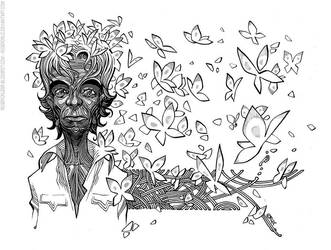 butterflies by rogercruz