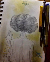 Rip Princess 27 12 2016 by rogercruz