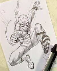 Spidey by rogercruz
