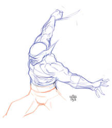 Wolverine Study 2 by rogercruz