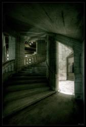 Shadows song by zardo