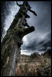 Death tree by zardo