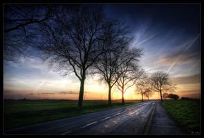 Way of tomorrow by zardo