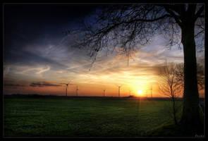 Trees of tomorrow by zardo
