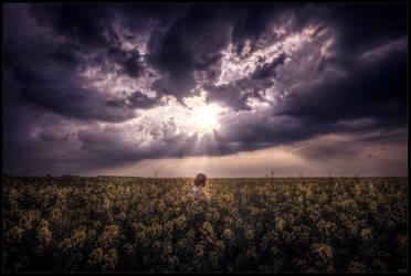 Hope of tomorrow by zardo