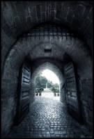 Mysteries door by zardo