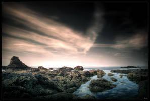 Wild coast by zardo