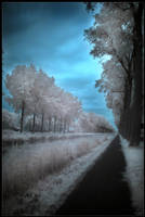 On the road of dreams by zardo