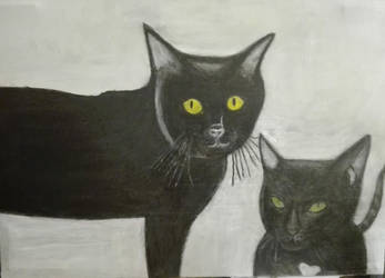 My Beloved Cats Samantha  Nerone by eyedev