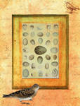 ATC Background Bird and Eggs by ValerianaSTOCK