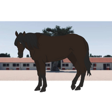 KRC Monsieur | 'Sid' by Equus-Heart