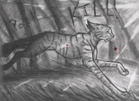 Fireheart's Race by WarriorapprenticeKat
