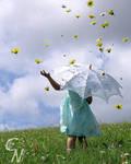 Rainy Daisy Days by C-Novack