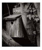 Sleepyhouse by tiinateaspoon