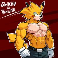 Sonichu by rakintorworld by rakintorworld
