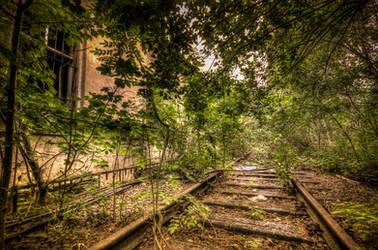 Trainspotter by DornFinn