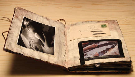 Killer Journal: Page II-III by cherriness
