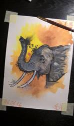 Elephant by basgroll