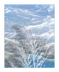 Winter... by LaxmiJayaraj