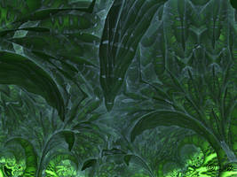 Rainforest... by LaxmiJayaraj