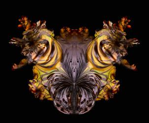 Frag.Papillon... by LaxmiJayaraj