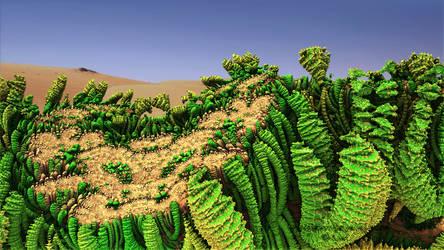 Desert Flora.. by LaxmiJayaraj