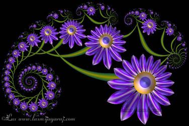 Raimu Spiral... by LaxmiJayaraj