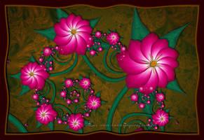 Flowers... by LaxmiJayaraj