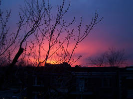 Pink sky by NaturalBornCamper