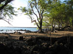 A Quiet Place by NaturalBornCamper