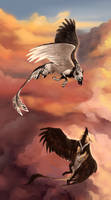 Sky Dance by Innali