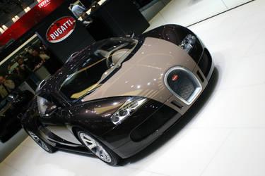Bugatti Veyron 16.4 by LGzozole