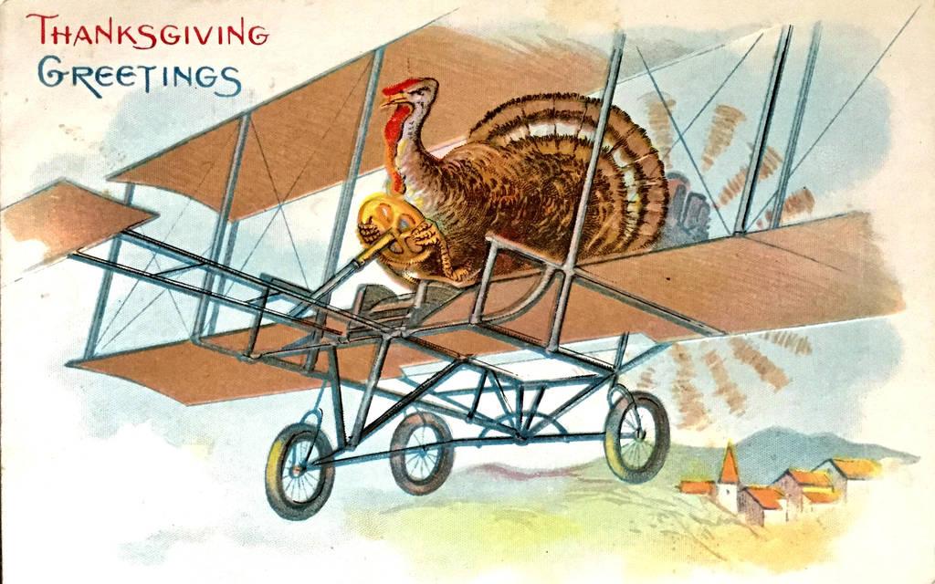 Turkeys DO Fly! by Yesterdays-Paper