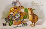 Chicks Sitting Pretty by Yesterdays-Paper