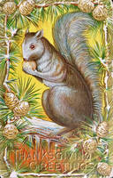Hungry Squirrel by Yesterdays-Paper