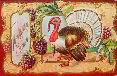 Turkey and Blackberries by Yesterdays-Paper