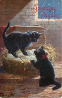 Cat Burglars by Yesterdays-Paper