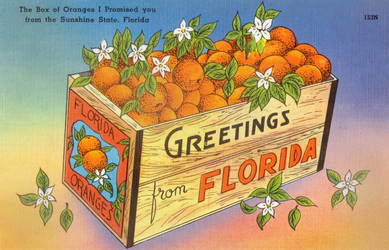 Vintage Florida - Crate of Oranges by Yesterdays-Paper