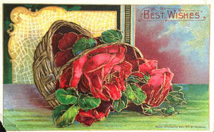 For Love of Roses by Yesterdays-Paper
