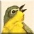 Yellowthroat Warbler Icon - Right by Yesterdays-Paper