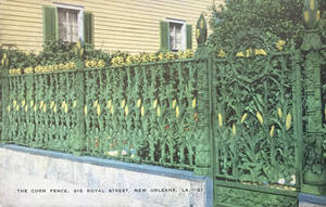Vintage New Orleans - Cornstalk  Fence by Yesterdays-Paper