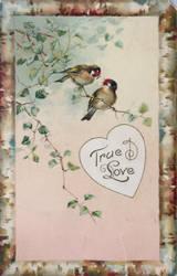 True Love by Yesterdays-Paper
