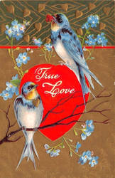 My True Love by Yesterdays-Paper